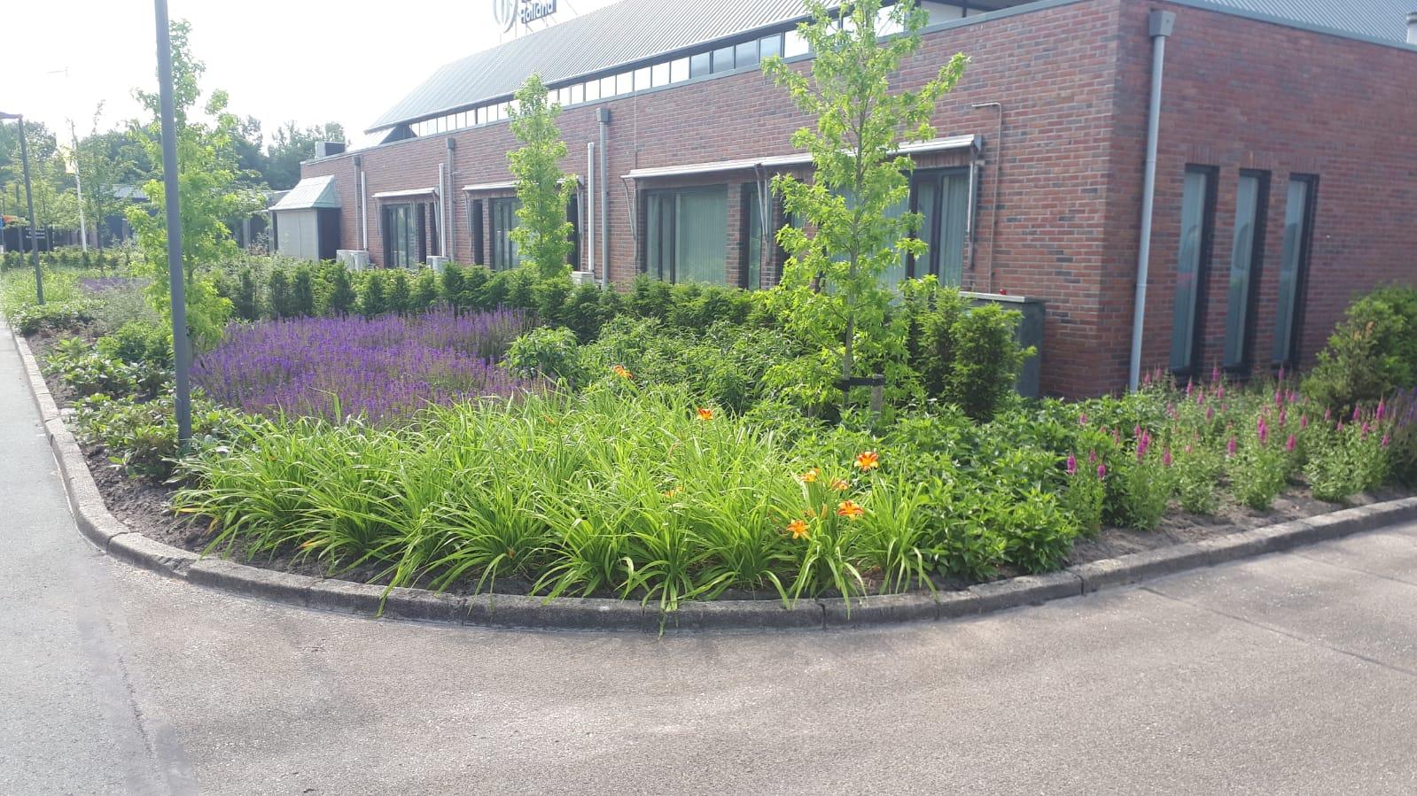 Aanleg tuin te Eelde bij Flora Holland