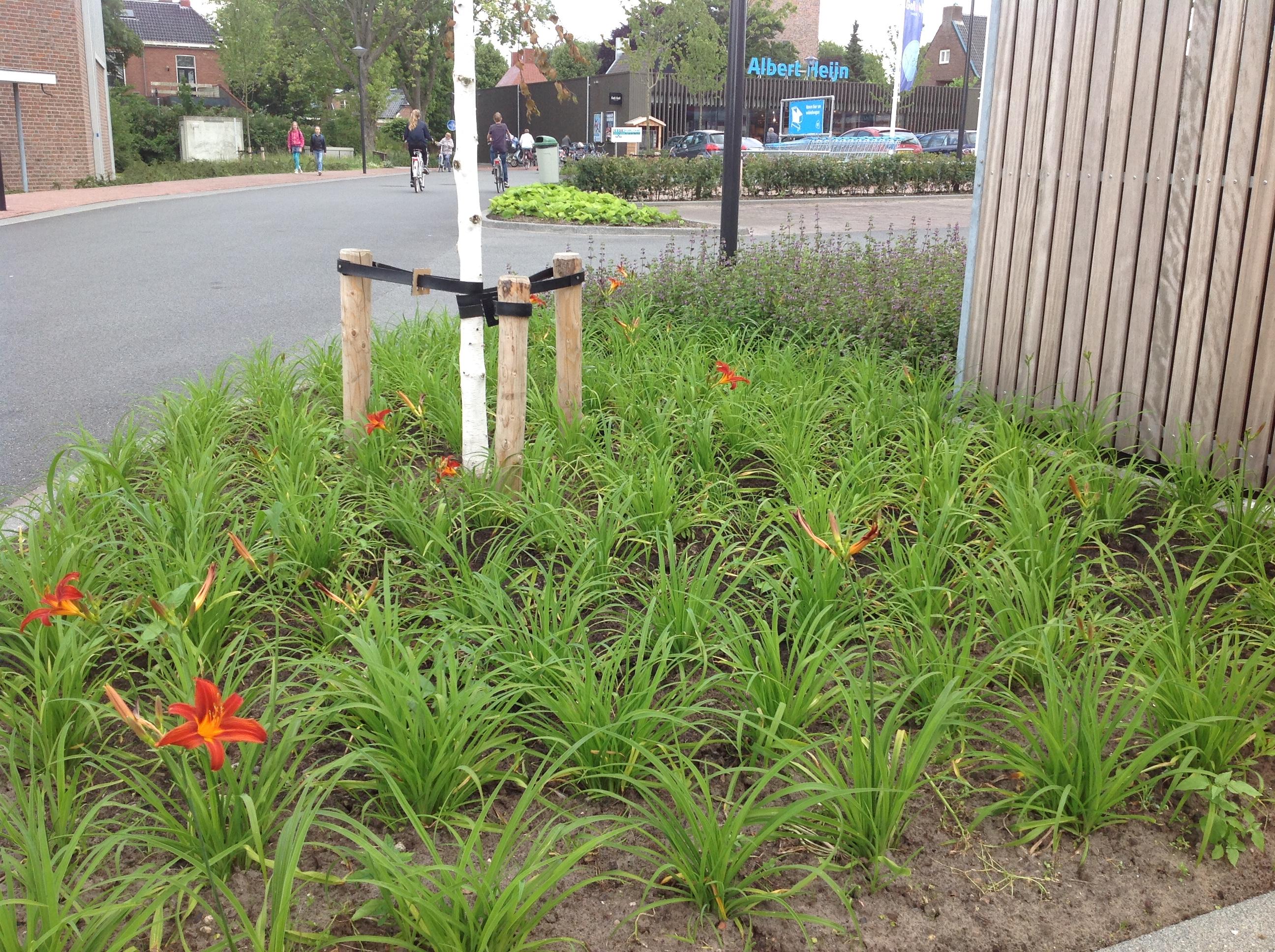 Aanleg plantvakken Gemeente Loppersum