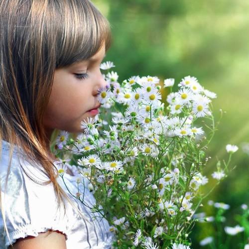 hd-kinderen-wallpaper-met-een-meisje-met-witte-bloemen-hd-bloemen-achtergrond-foto