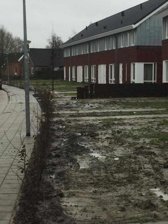 Aanbrengen haagbeplanting en bomen Almastraat Bedum